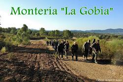 """MONTERÍA """"LA GOBIA"""" 2018"""
