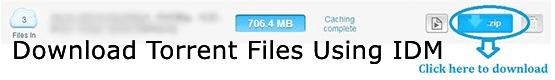 Download Torrent Files Easily Using Internet Download Manager