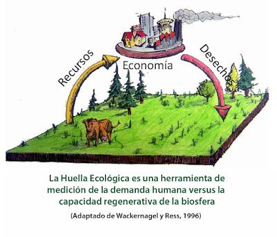 ¿Como medir nuestro impacto en el ambiente?