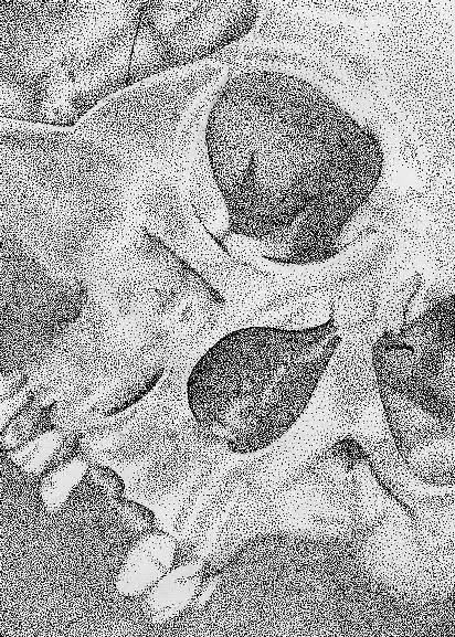 Skull, dot (ink)