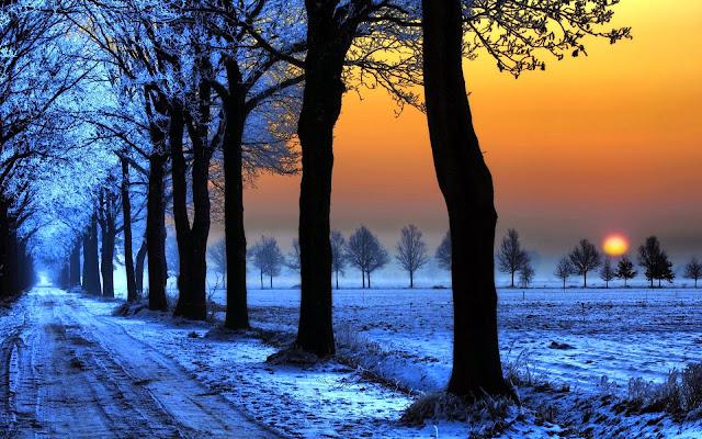 Hình nền mùa đông chất lượng cao
