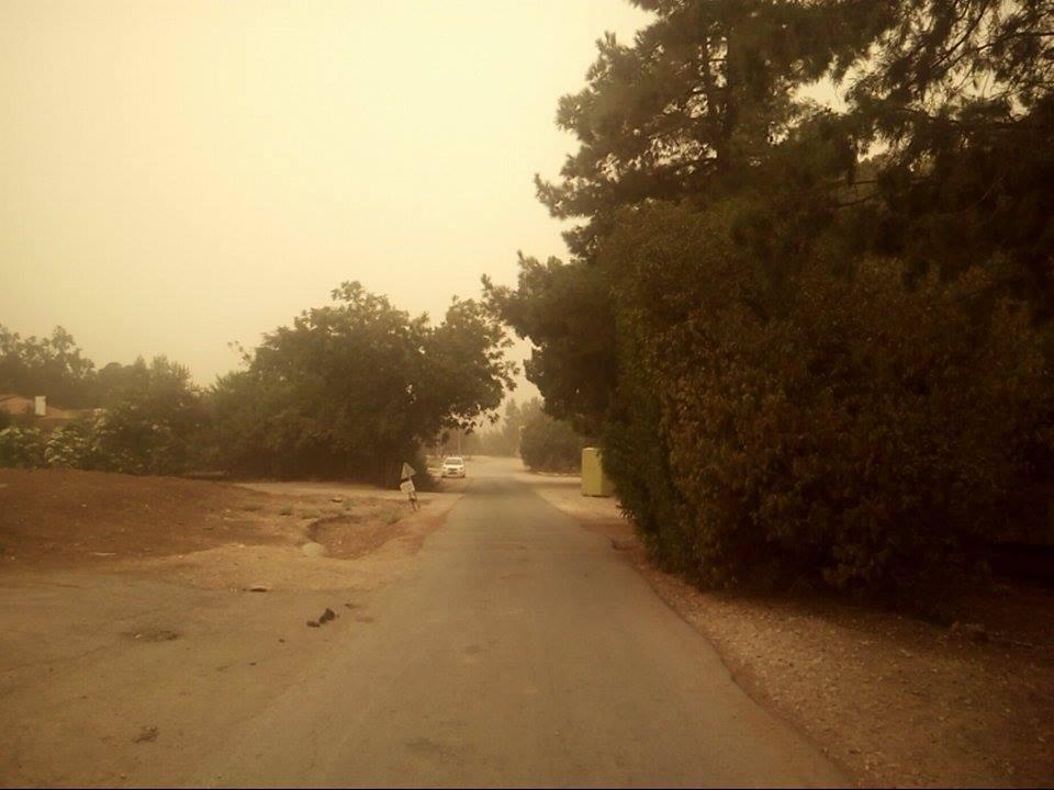 Погода тюнино брянской области