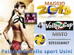 4° volley cup usini 2013