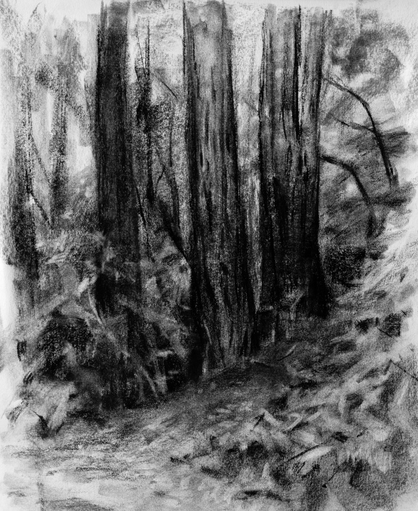 The Main Loop Charcoal Drawing A Logical Method Video Included