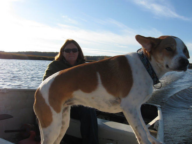 Laurie Fullerton and Daisy on the Essex River