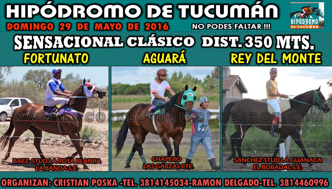 29-05-16-HIP. TUCUMAN-CLAS. 1