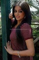 Exclusive, priyamani, hot, photo, shoot