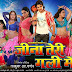 Hamar Rani Bada Rasdar Badi Ho Song Lyrics - Jeena Teri Gali Me (2013)