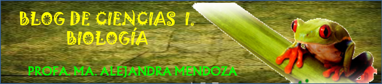 CIENCIAS I ( BIOLOGIA )