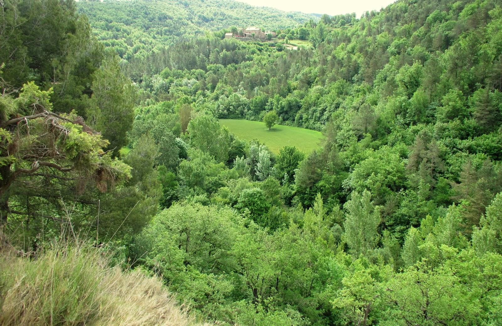 Santa Eulàlia de Riuprimer, l'Estany.