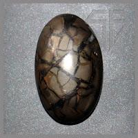 Batu Akik Sisik Naga Hitam