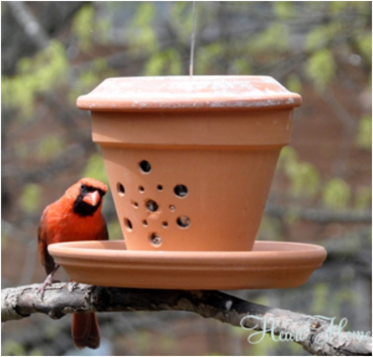 Diy bird feeders idees and solutions for Dyi bird feeder