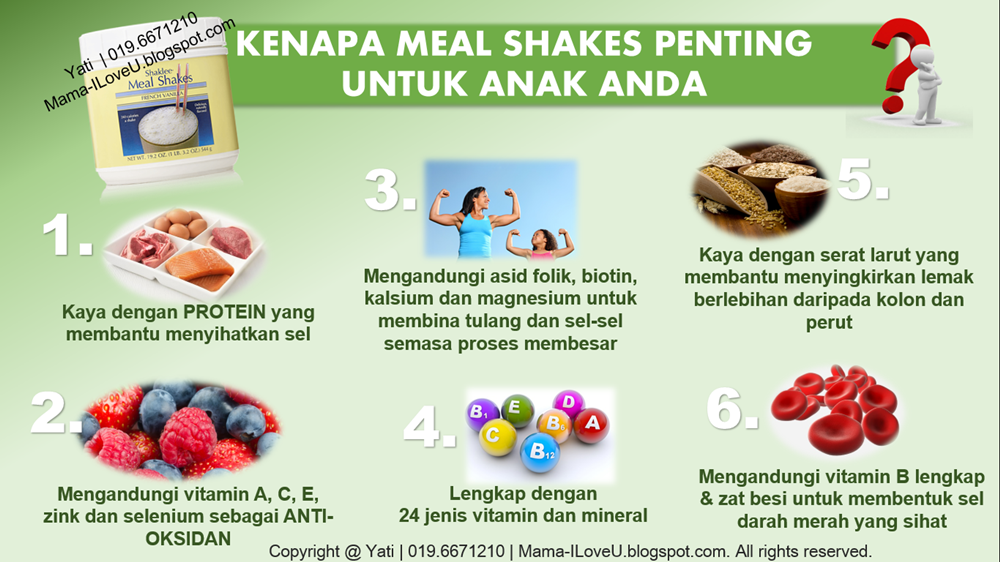 Fungsi Mealshakes Shaklee
