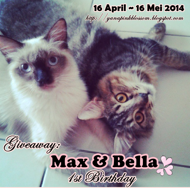 http://yanapinkblossom.blogspot.com/2014/04/giveaway-2-max-bella-1st-birthday.html