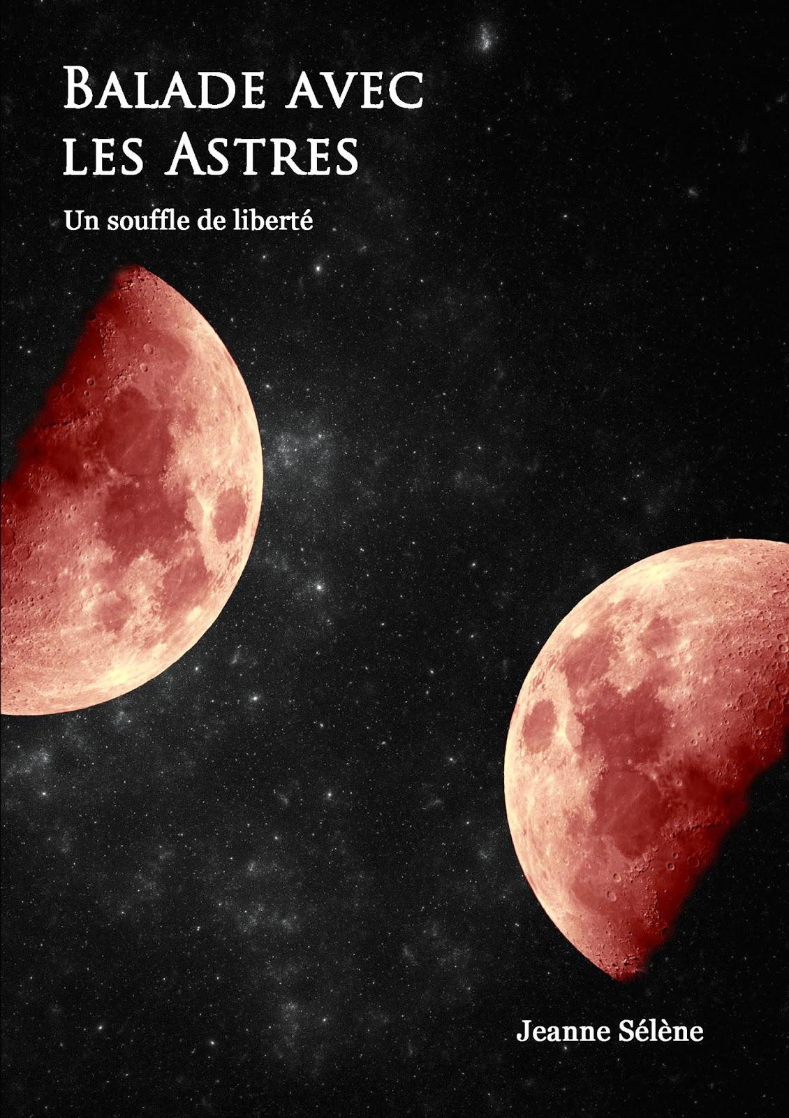 Roman de fantasy sur amazon pour liseuse électronique