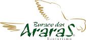 Contemplação | Buraco das Araras