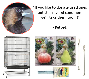 Amazon Wish list for bird rescue