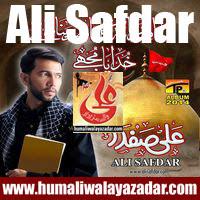 ishqehaider.blogspot.com/2013/07/ali-safdar-nohay-2014.html