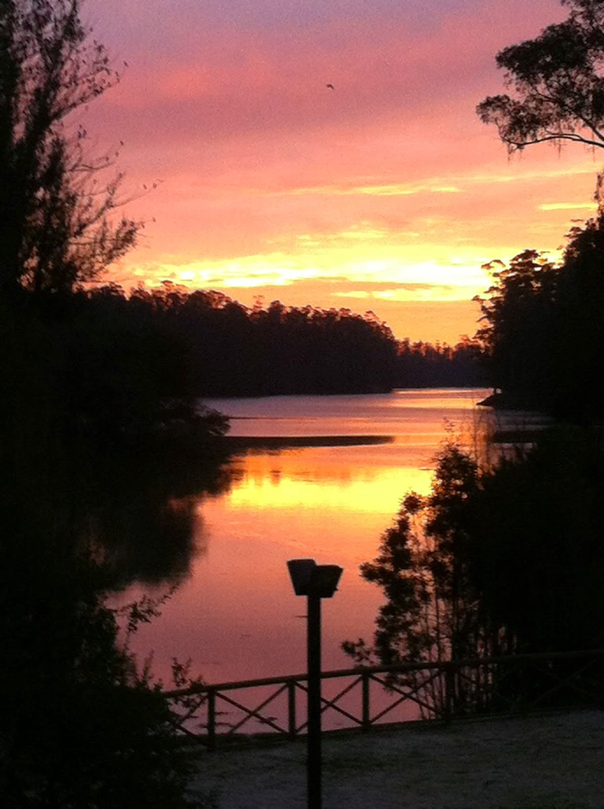 La Laguna de la Luz