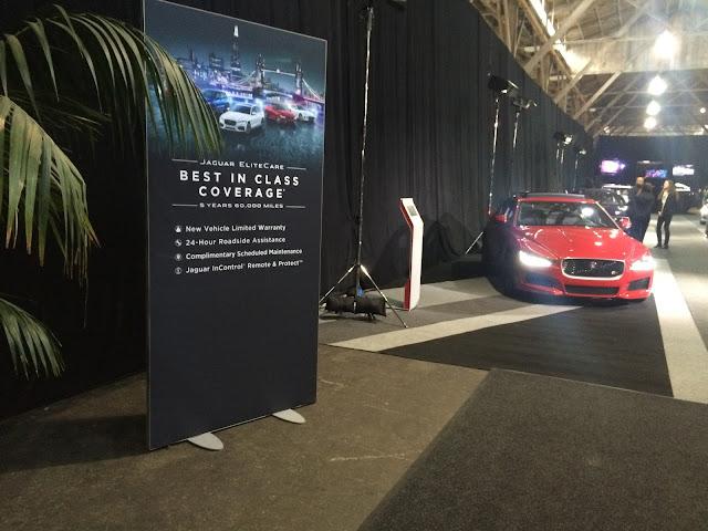 Jaguars on display in Pier 35