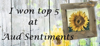 Aud Sentiment Top 5