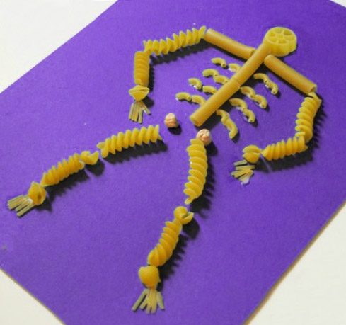 http://comohacermaquetas.blogspot.com/2015/02/esqueleto-hecho-con-fideos.html