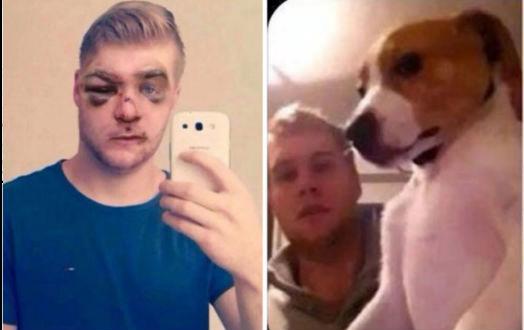 paliza por golpear brutalmente a su perro