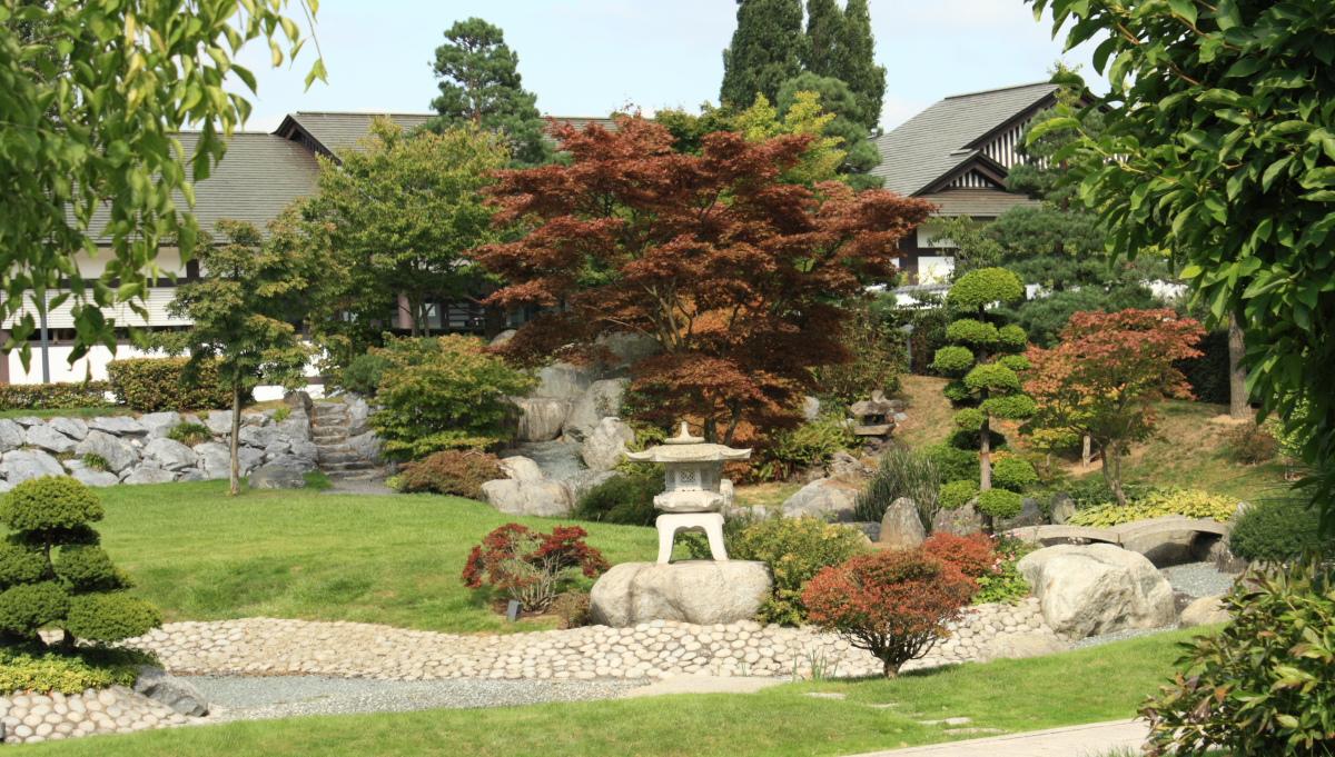 Reflections: Japanese garden : Dusseldorf 2012