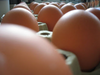 5 Manfaat Telur Bagi Kesehatan Yang Jarang Diketahui