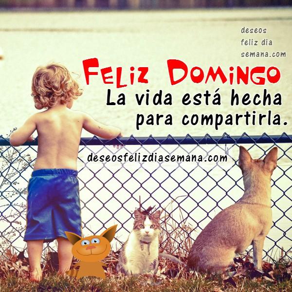 Imagen con frases de feliz domingo, mensaje positivo para facebook, que tengas un feliz domingo, saludo de fb por Mery Bracho.