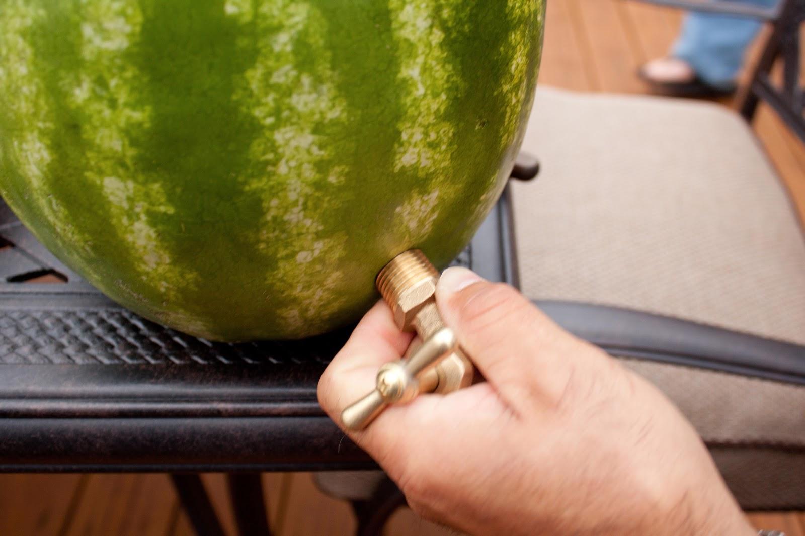 Fat and Happy Blog: Watermelon Beverage Dispenser aka Cocktail Keg ...