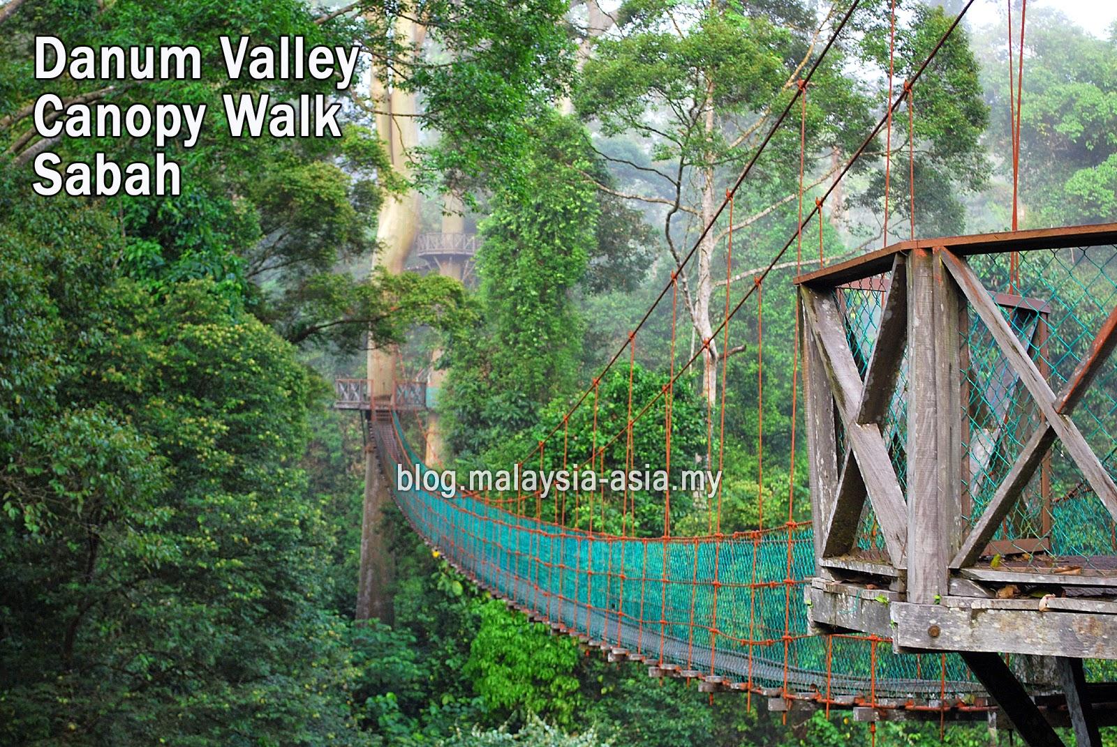 Sabah Danum Valley Canopy Walk