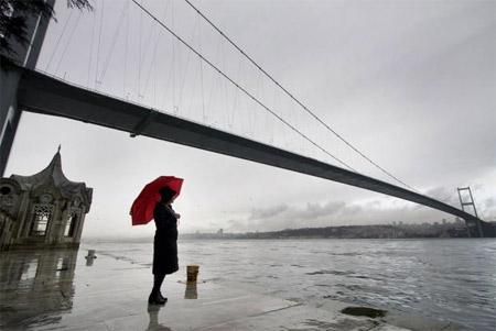 fobia a los puentes