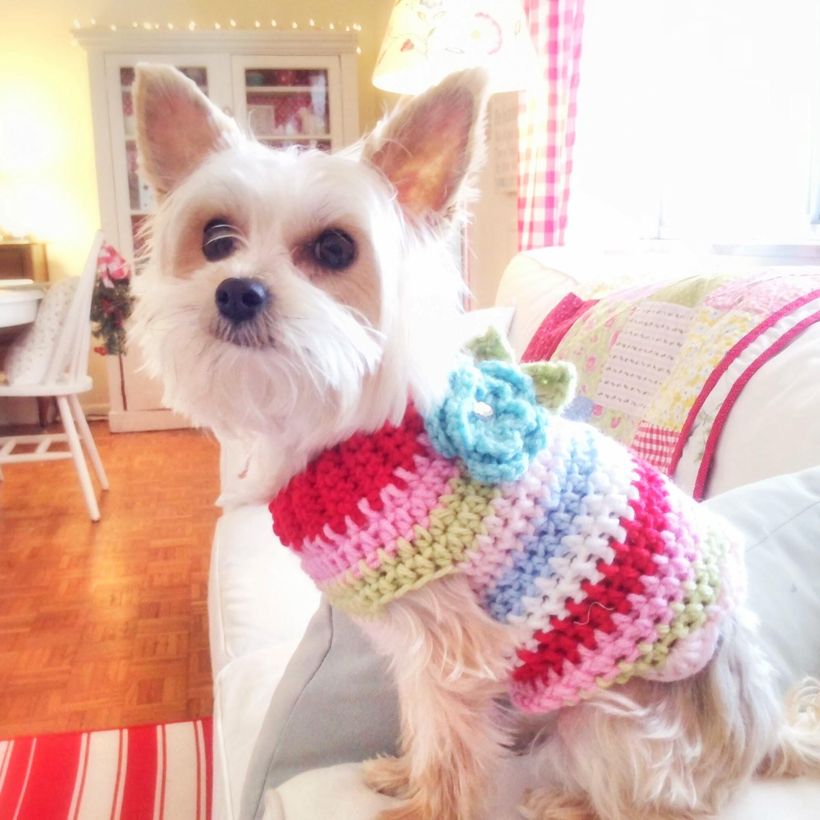 Bonito Patrón De Crochet Para El Suéter Chihuahua Colección - Manta ...