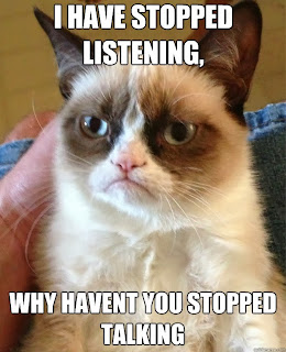 grumpy cat talking, grumpy cat why haven't you stopped talking, grumpy cat i have stopped listening