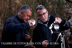 TALLERES Y CURSOS DE FOTOGRAFA CON PACO ELVIRA