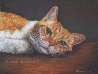 Cat portraits, dog portraits , pet paintings traditionally hand painted in pastel