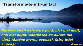 Transformă-te într-un lac