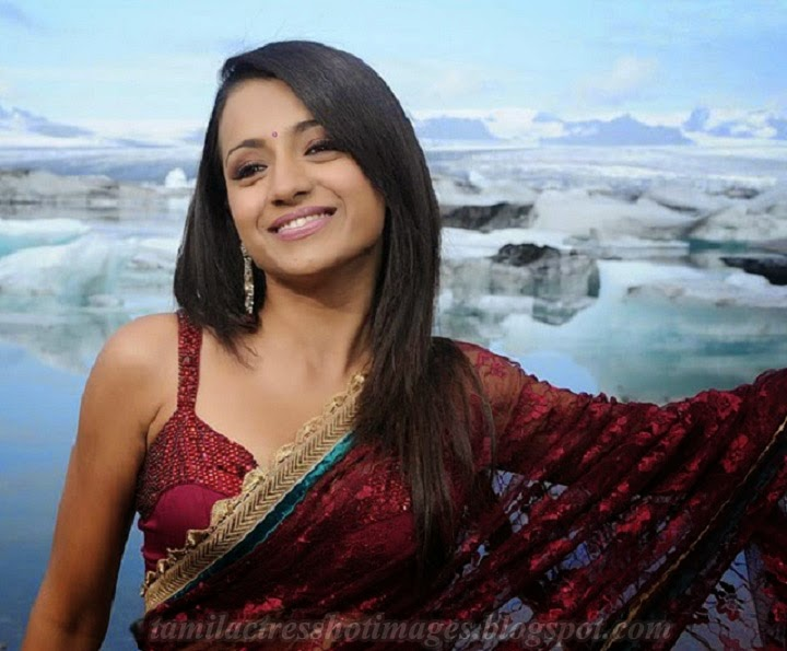 Trisha Hot Saree Photos