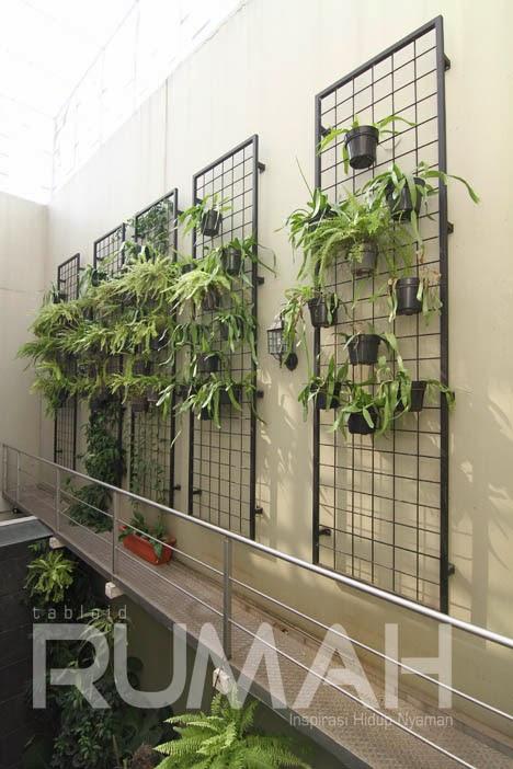 desain rumah di lahan sempit inspirasi taman pada hunian
