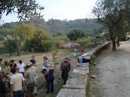 2011 Outubro - Darei