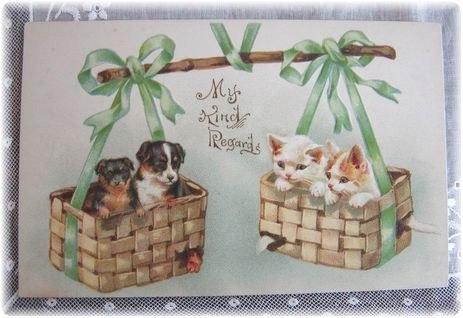Cartes postales anciennes: Carte postale ancienne avec chiens et chats