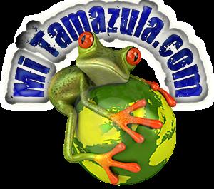 Mi Tamazula.com