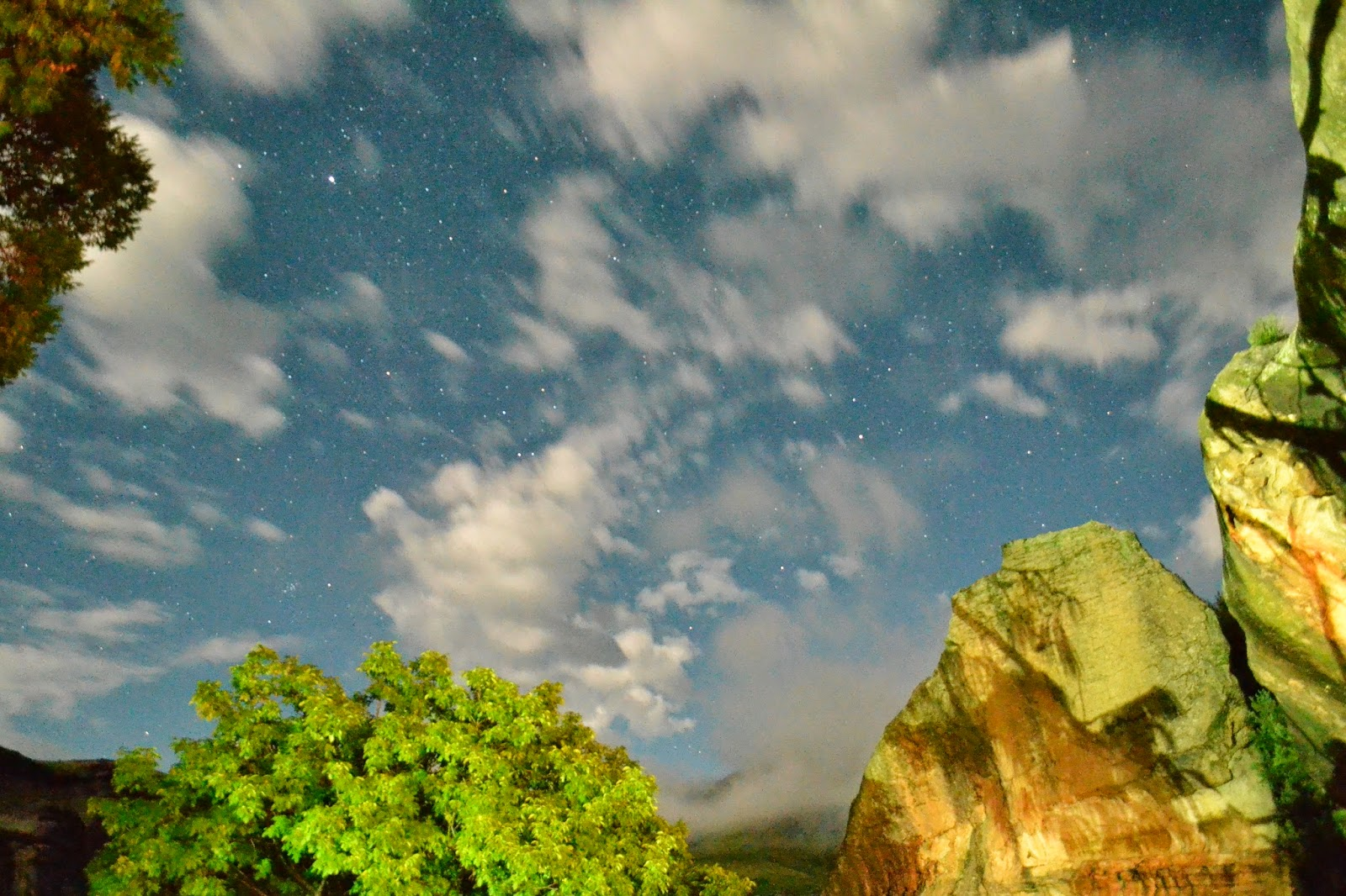 Tree, rocks and fast moving clouds in a night sky