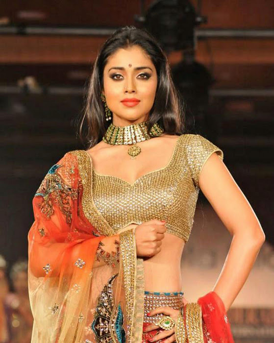 Actress shriya saran hot saree photos collaction