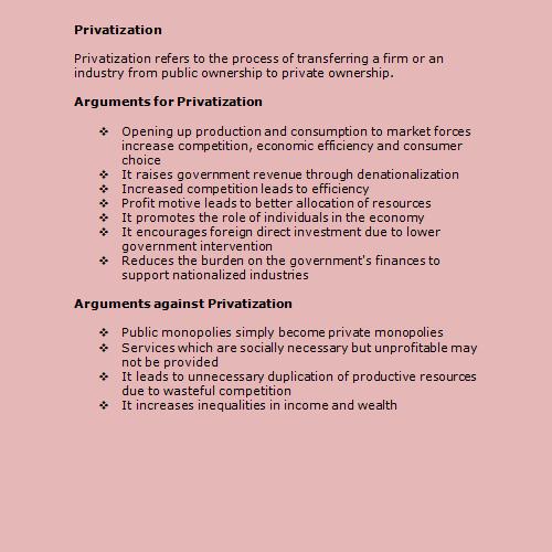 essay about privatization