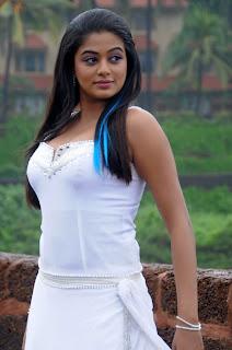 Hot and sexy Priyamani photo shool |southindian actress 30