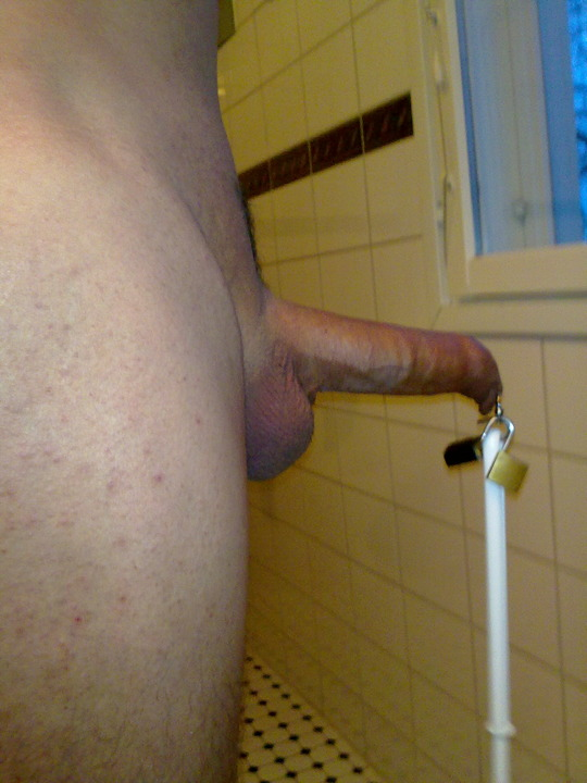 image Cbt brush weight and painful cockring to cum