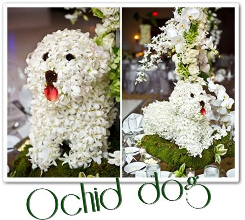 orchid dog, blomster hund
