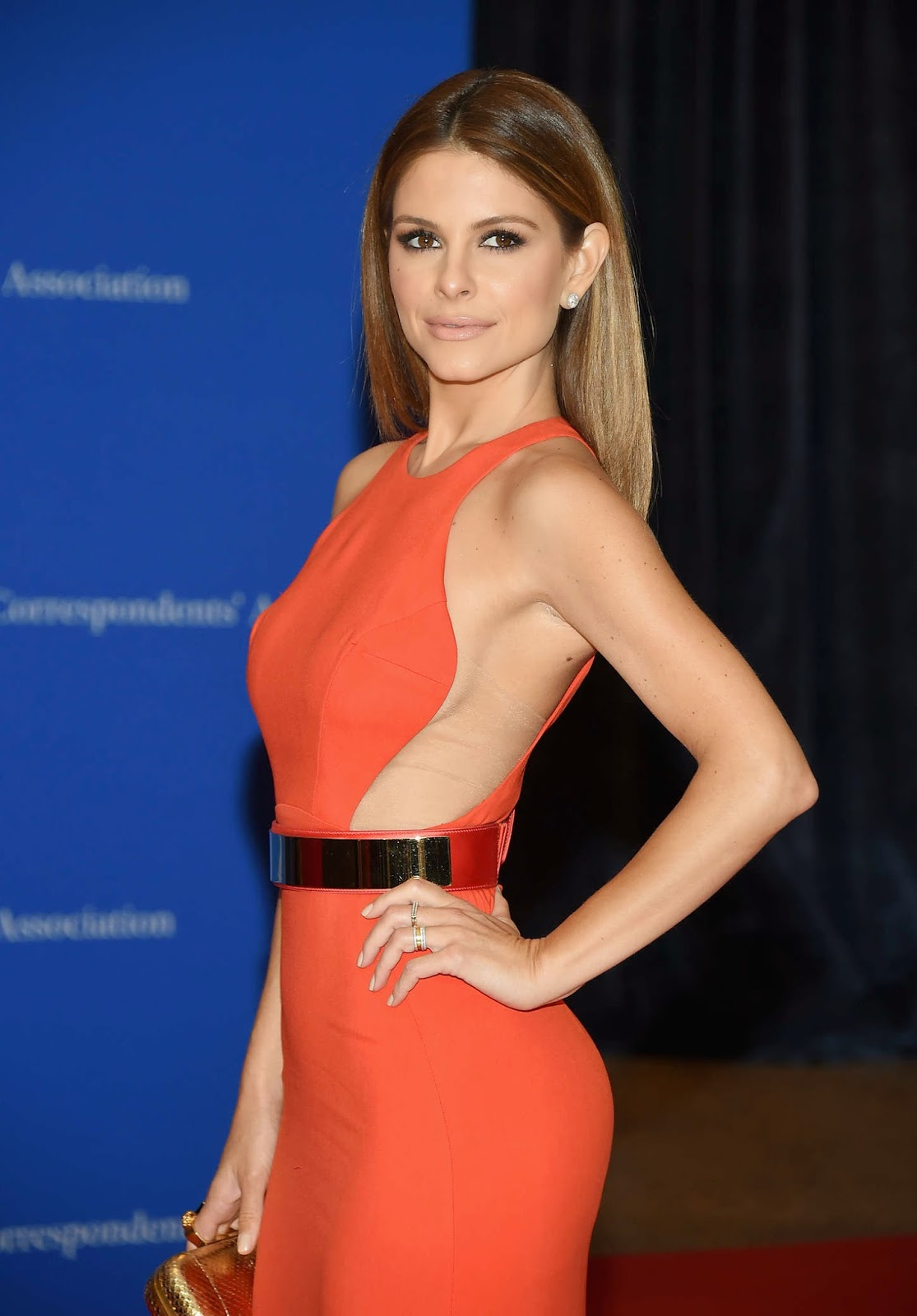 Maria Menounos: 2015 White House Correspondents Association Dinner